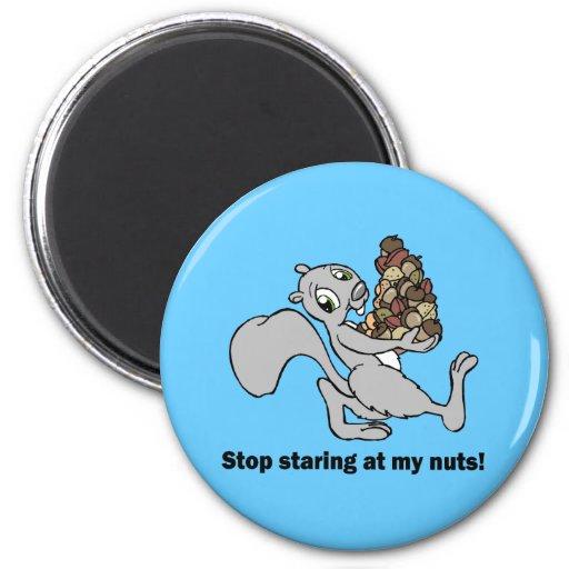 Ardilla nuts divertida imán redondo 5 cm