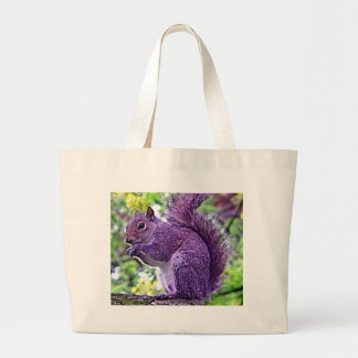 Ardilla púrpura bolsa