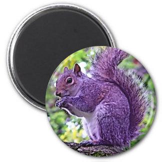 Ardilla púrpura imán redondo 5 cm