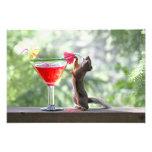 Ardilla que bebe la bebida tropical fotografia