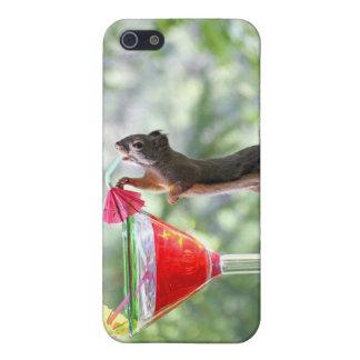 Ardilla que bebe la bebida tropical iPhone 5 carcasa