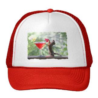 Ardilla que bebe la bebida tropical gorras de camionero