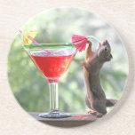 Ardilla que bebe la bebida tropical posavaso para bebida