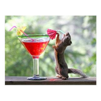 Ardilla que bebe un cóctel en la hora feliz tarjeta postal