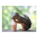 Ardilla que come un cono de helado tarjetas postales