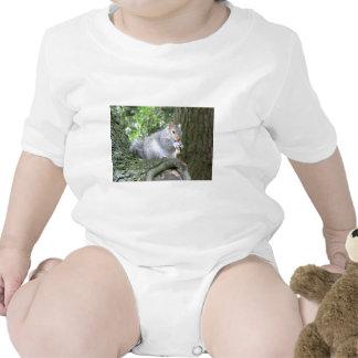 Ardilla que come una nuez de mono traje de bebé