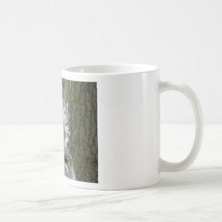 Ardilla que come una nuez de mono taza de café