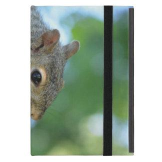 Ardilla que cuelga en un árbol iPad mini carcasas