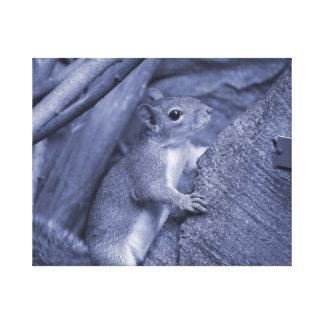 ardilla que sube lindo animal azul del árbol impresión en tela