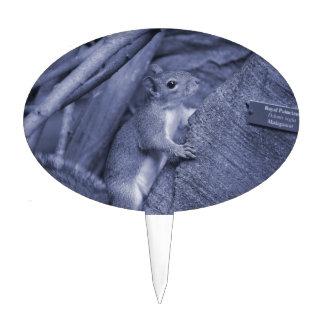 ardilla que sube lindo animal azul del árbol palillos de tarta