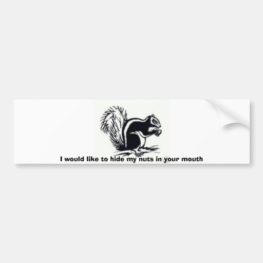 ardilla, quisiera ocultar mis nueces en su… etiqueta de parachoque