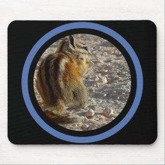Ardilla rayada - marco multi tapetes de ratón