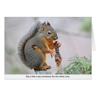 Ardilla sonriente que come el cono del pino tarjeta de felicitación