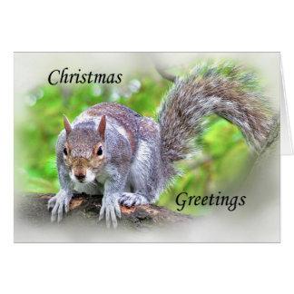 Ardilla, tarjeta de las felices Navidad,