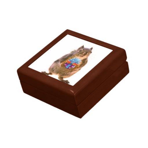 Ardilla y presente caja de recuerdo