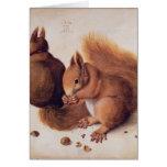 Ardillas, 1512 tarjeta de felicitación