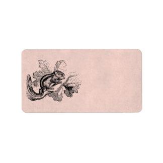 Ardillas de los 1800s de la ardilla rayada del vin etiqueta de dirección