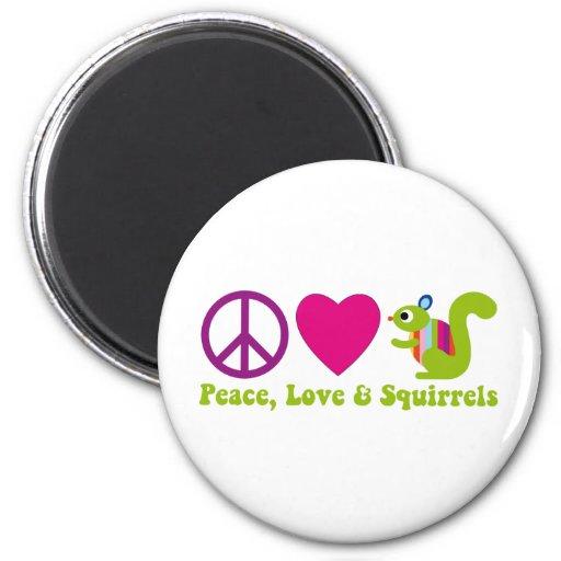 Ardillas del amor de la paz imán
