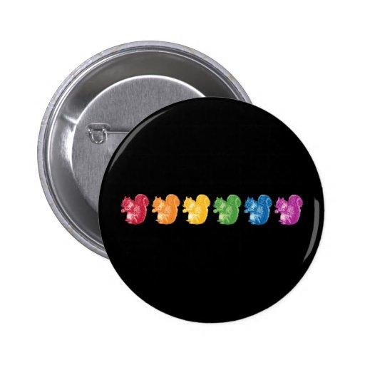 Ardillas del arco iris pin redondo 5 cm