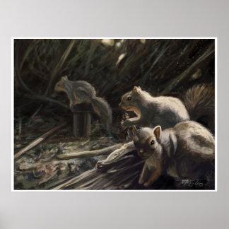 ARDILLAS del parque de naturaleza del EL Dorado Póster