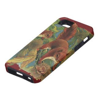 Ardillas del vintage, animales salvajes, criaturas iPhone 5 Case-Mate funda