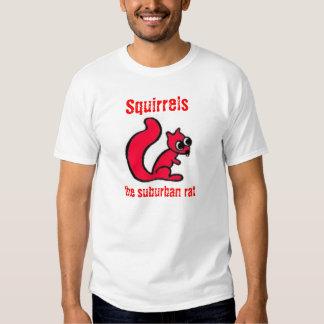 Ardillas: la rata suburbana (roja) playera