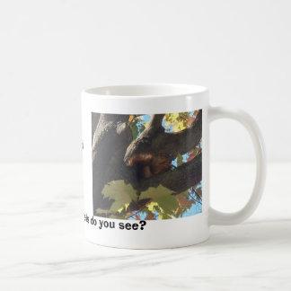 Ardillas locas taza de café