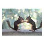 Ardillas que comparten una foto del cacahuete