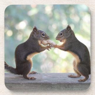 Ardillas que comparten una foto del cacahuete posavasos