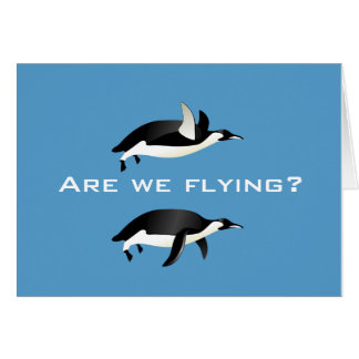 Are We Flying Card