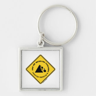 Are We Heading Towards A Fiscal Cliff? (Econ Sign) Keychain