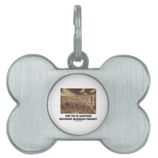 Are We In Another Maunder Minimum Period? Pet Name Tag