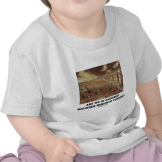 Are We In Another Maunder Minimum Period Tshirt