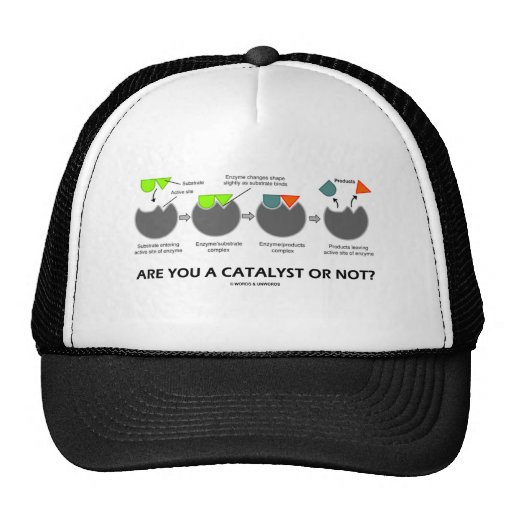 Are You A Catalyst Or Not? (Enzyme-Substrate) Hat