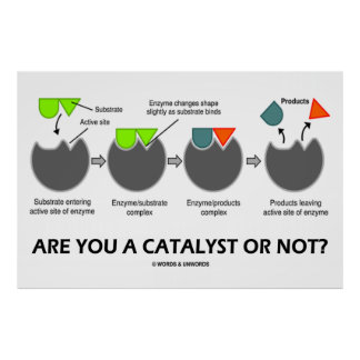 Are You A Catalyst Or Not? (Enzyme-Substrate) Posters