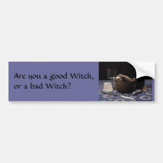 Are you a good Witch, or a bad Witch? Car Bumper Sticker