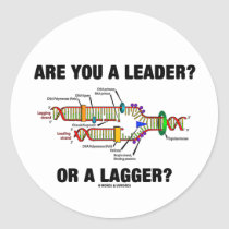 Are You A Leader? Or A Lagger? (DNA Replication) Round Sticker