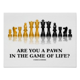 Are You A Pawn In The Game Of Life? (Chess Humor) Print
