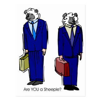 Are You a Sheeple Postcard