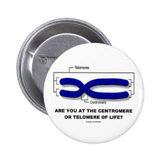 Are You At The Centromere Or Telomere Of Life? Button