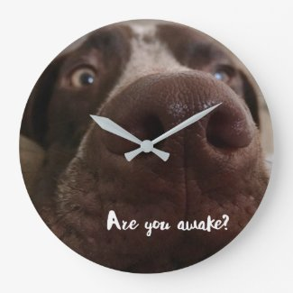 Are You Awake Wall Clock
