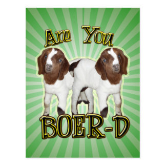 ARE YOU BOER-D YET? POSTCARD