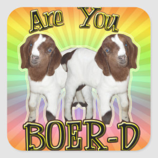 ARE YOU BOER-D YET SQUARE STICKERS