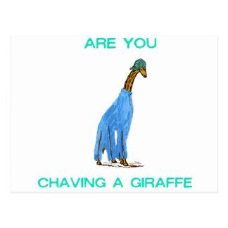 Are You Chaving a Giraffe.png Postcard