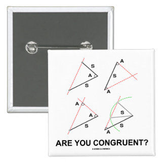 Are You Congruent? (Congruent Angles) Pinback Buttons