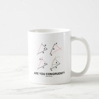 Are You Congruent? (Congruent Angles) Coffee Mug