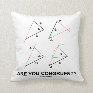 Are You Congruent? (Congruent Angles) Throw Pillow
