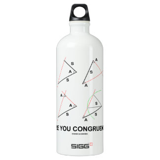 Are You Congruent? (Congruent Angles) Water Bottle