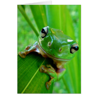 ARE YOU FEELING LUCKY, PUNK (frog) ~ Card