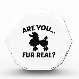 Are You Fur Real? Award